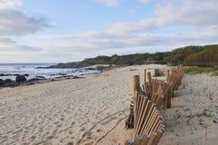 Bescherming van de strandduinen stock fotografie