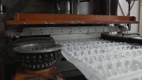 Beschikbare de waren van het voedselpakket productieinstallatie, de productielijn van de eierencontainer stock video
