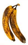 Beschimmelde Bananen Stock Afbeeldingen