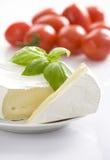 Beschimmelde kaas met basilicumbladeren. Stock Foto