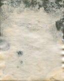Beschimmelde oude watercolourdocument textuur Royalty-vrije Stock Fotografie