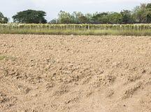 Beschmutzen Sie Feld mit dem Pflügen vom Traktor Stockbilder