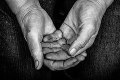 Beschmutzte Hände von älteren Frauen Stockbild