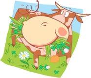 Beschmutzte Kuh auf der Wiese stock abbildung