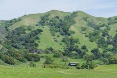 Beschmutzter Hügel lizenzfreie stockbilder