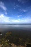 Beschmutztes geöffnetes Wasser der Ostsee mit blauem Himmel Lizenzfreies Stockfoto