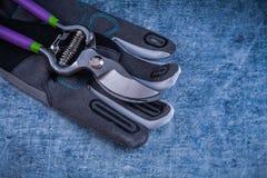 Beschneidungsscheren besetzen Schutzhandschuhe auf metallischem Oberflächenagric mit Personal Stockbilder