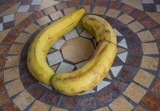 Beschriften Sie O, das mit Bananen gemacht wird, um einen Buchstaben des Alphabetes mit Früchten zu bilden Stockfotografie