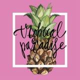 Beschriftungsphrase - tropisches Paradies Ananas mit tropischen Blättern Stockbilder