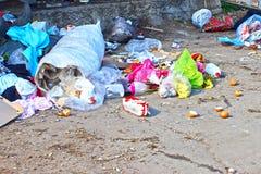 Beseitigung des Abfalls und des Mülleimers lizenzfreies stockfoto