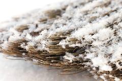 Besen im Schnee stockfotografie