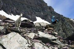 Besichtigen der Rockies stockfotos