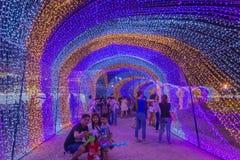 Besichtigende multi Farben LED der Leute verzierten öffentlich Park Stockbild