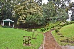 Besichtigung in Meghalaya Lizenzfreies Stockfoto