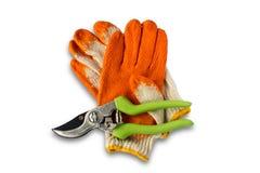 Beskära sax och handskar Arkivfoto