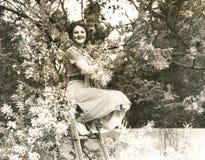 Beskärare av träd arkivfoto