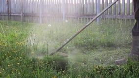 Beskäraregräsklipparegräsmatta mejar gräs arkivfilmer
