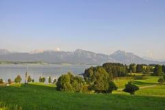 Beskåda över laken Forggensee till alpsna Arkivfoto
