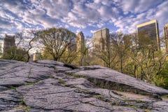 Beskåda av Central Park, New York City Arkivfoto