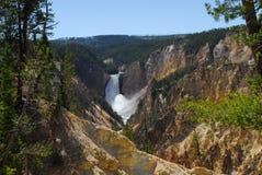 Fäll ned Yellowstone nedgångar Royaltyfria Foton