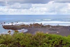 Playa de Jardin Arkivbilder