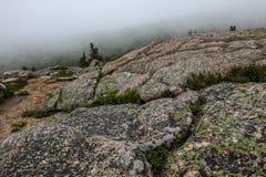 Beskåda från det Cadillac berget i Acadia NP, Maine Royaltyfri Fotografi