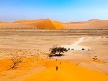Beskåda från dyn 45 i den Namib öknen, den Namib-Naukluft nationalparken, Namibia, Afrika arkivfoton