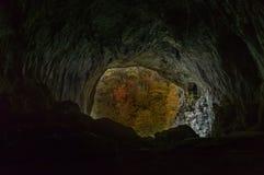 Beskåda från inre en grotta som ut ser till höstskogen Arkivfoto
