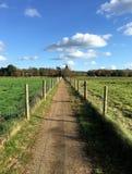 Beskåda ner den tomma landsbanan på härlig höstdag Royaltyfri Foto