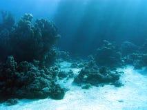 Beskåda på korallreaf med sunbeams som är längst ner av det tropiska havet Royaltyfria Bilder