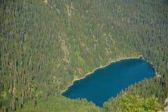 Beskåda uppifrån av berget Pshegishvvy till sjön Malaya Ritsa, Abchazien Arkivfoto