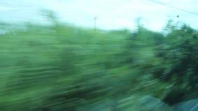 Beskåda ut från ett fönster av ett drev stock video