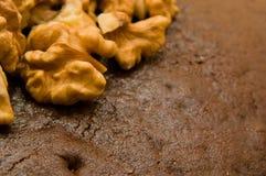 Besköt valnötter på en chokladkexcloseup Royaltyfri Foto