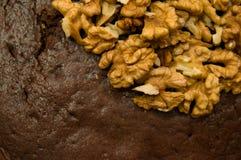 Besköt valnötter på ett chokladkex (högert hörn, den bästa sikten) Arkivbilder
