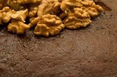 Besköt valnötter på ett chokladkex (vänstersidahörn, den främre sikten) Royaltyfria Bilder