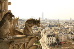 Notre Dame. Paris. Arkivbild