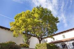 Beskickning San Luis Obispo de Tolosa Courtyard California Arkivbild