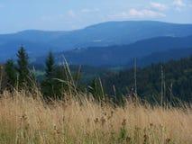 Beskid-Berge Lizenzfreies Stockfoto