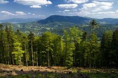 beskidy στιλβωτική ουσία βουνών στοκ φωτογραφία