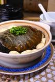 beskjuten slapp sköldpadda för porslin läcker mat Arkivfoto