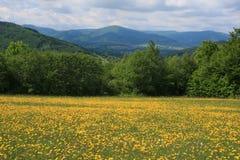 Beskydy Berge im Frühjahr stockfoto