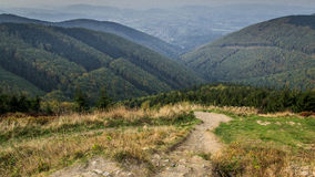 Forrests and hills. View to Beskydy hills in Czech republic Stock Photos