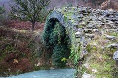 Besletskybrug, sinds de tijd van Koningin Tamara, dichtbij Sukhumi royalty-vrije stock foto
