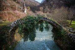 Besletskybrug, sinds de tijd van Koningin Tamara, dichtbij Sukhumi stock afbeeldingen