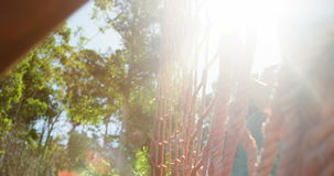 Beslutsamma kvinnor som klättrar ett netto under hinderkurs stock video