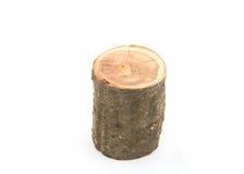 Besnoeiing van een boomboomstam royalty-vrije stock foto's