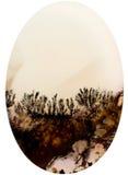 Besnoeiing van een steen met landschap van kristallen royalty-vrije stock afbeelding