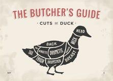 Besnoeiing van vleesreeks Het diagram en de regeling van de afficheslager - Eend Uitstekende typografische hand-drawn Vector illu stock illustratie