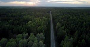 Besnoeiingen van de satellietbeeld de rechte weg door dicht bos in schemer stock video