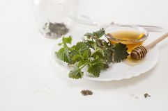 Besnoeiings jonge netel en kom honing op witte plaat stock foto's